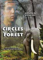 circles in a forest